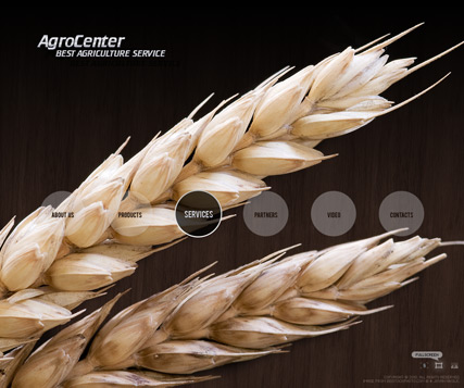 Agro Center - VideoAdmin flash templates