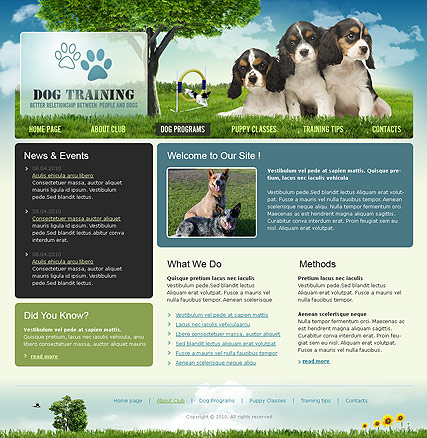 Dog Training - Website template