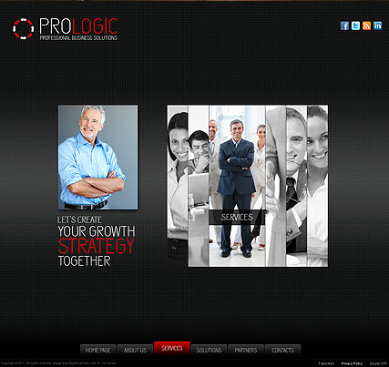 Pro Business - Easy flash templates