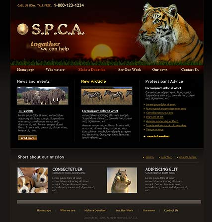 S.P.C.A. - HTML template